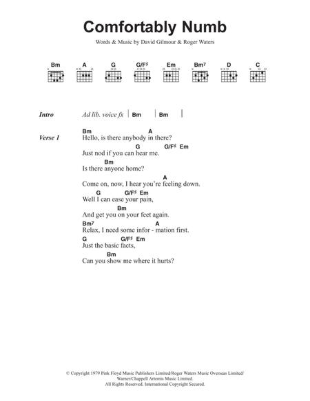 Download Digital Sheet Music of pink floyd for Lyrics and Chords