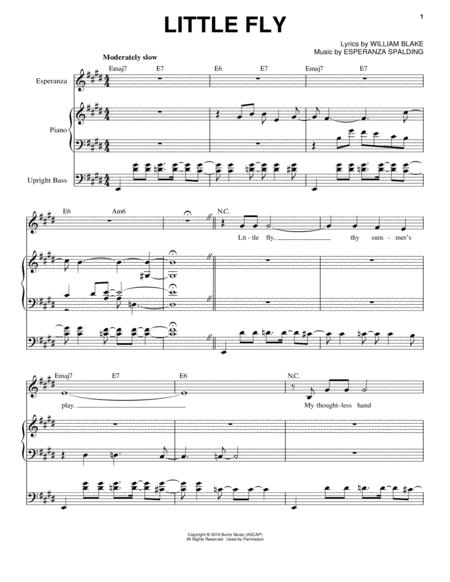 Esperanza Spalding Sheet Music To Download And Print World