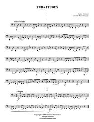 Vaclav Nelhybel